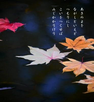 20141017紅葉